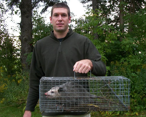Josh with an opossum